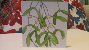 Pen and Watercolour Mistletoe