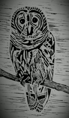 Worried looking lino cut owl