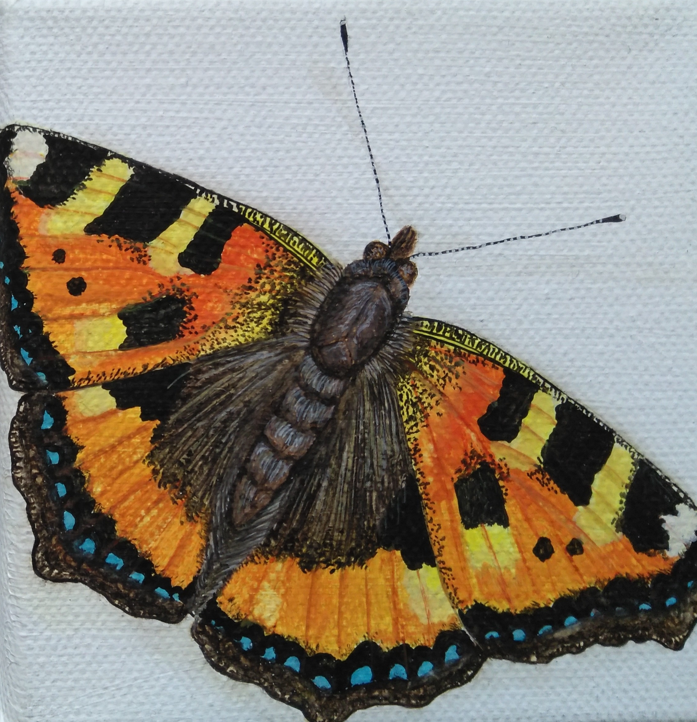 UK Butterfly Painting